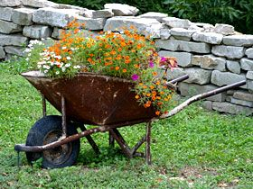 Flower Garden Ideas With Old Wheelbarrow google image result for http://www.garden/images/app/regional