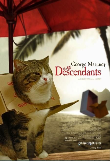 George Maruney Is My Fav Youtube Cats Famous Movie Posters Cat Movie