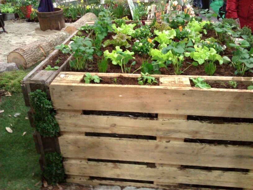 Hochbeet Aus Europaletten Garten Veg Garden Garden Und Home