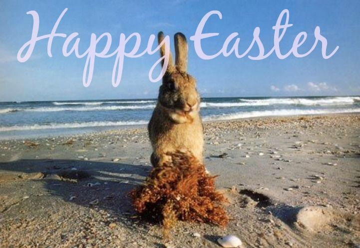 Happy Easter From Our Boat House To Yours Happy Easter Easter Egg Hunt Coastal Holiday