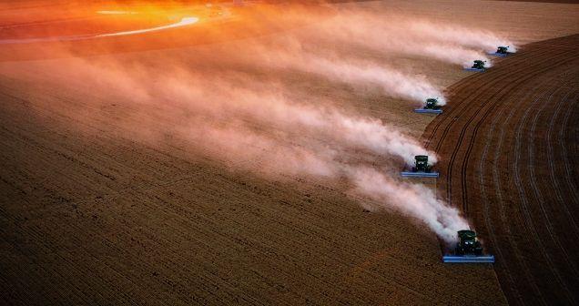 Galería | Producción agrícola en el mundo