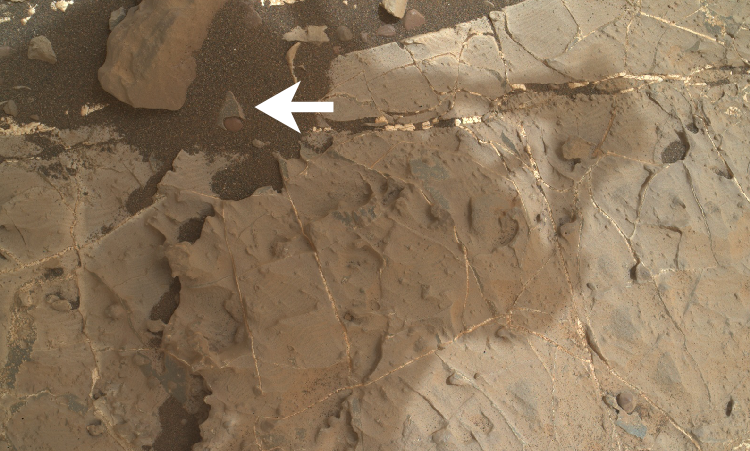 Star Trek Badge Found On Mars? Star trek, Trek, Badge