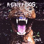 A GIANT DOG https://records1001.wordpress.com/