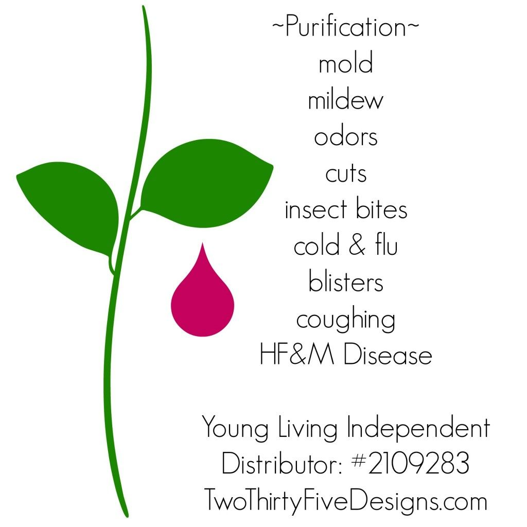 Purification Essential Oil Uses by Two Thirty~Five Designs