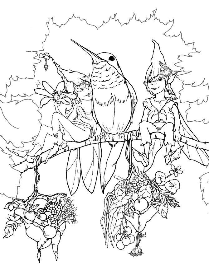 Vögel Und Elfen Kostenlos Coloring Seiten Für Erwachsene 815 32