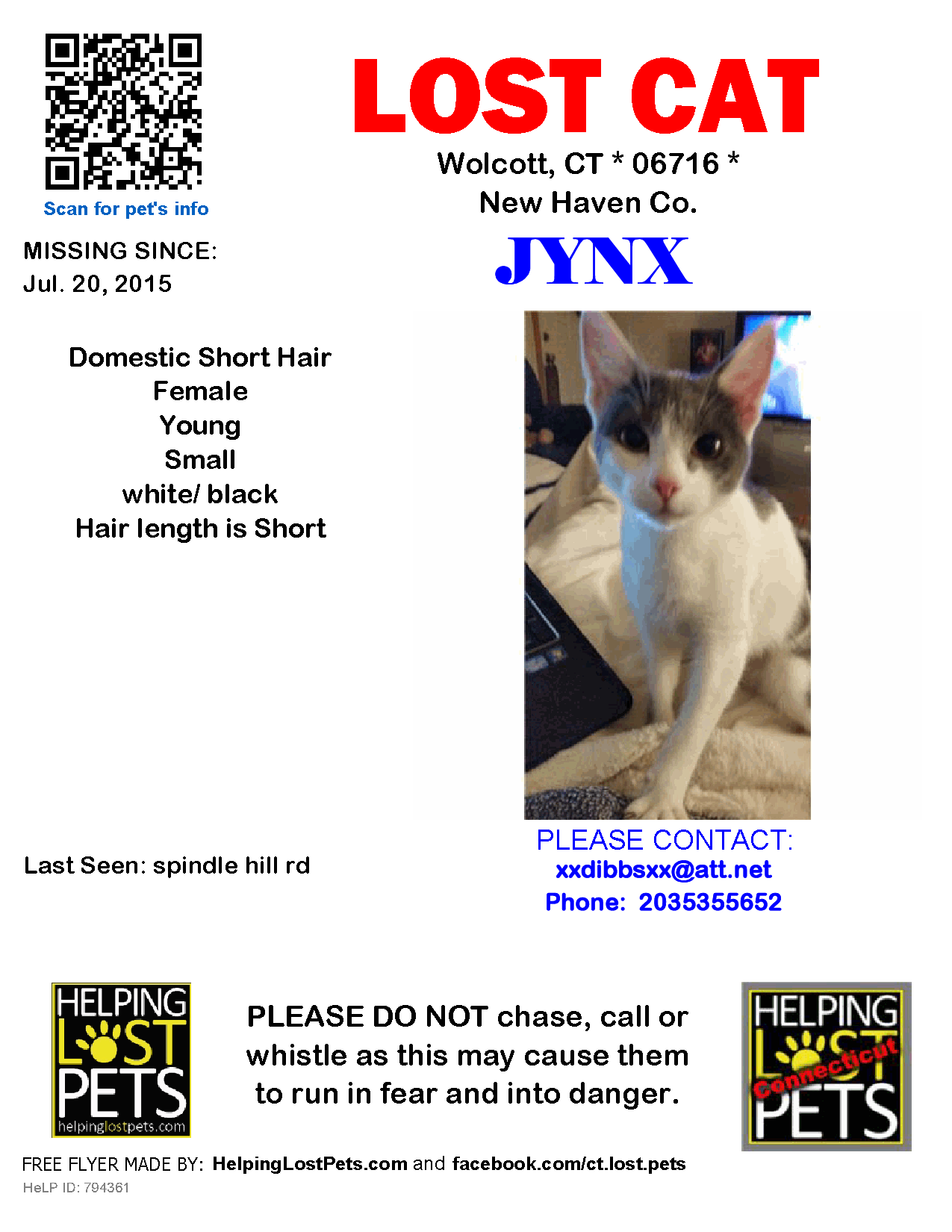 Lost Cat Female Wolcott Ct Usa 06716 Lost Cat Domestic Short Hair Cats