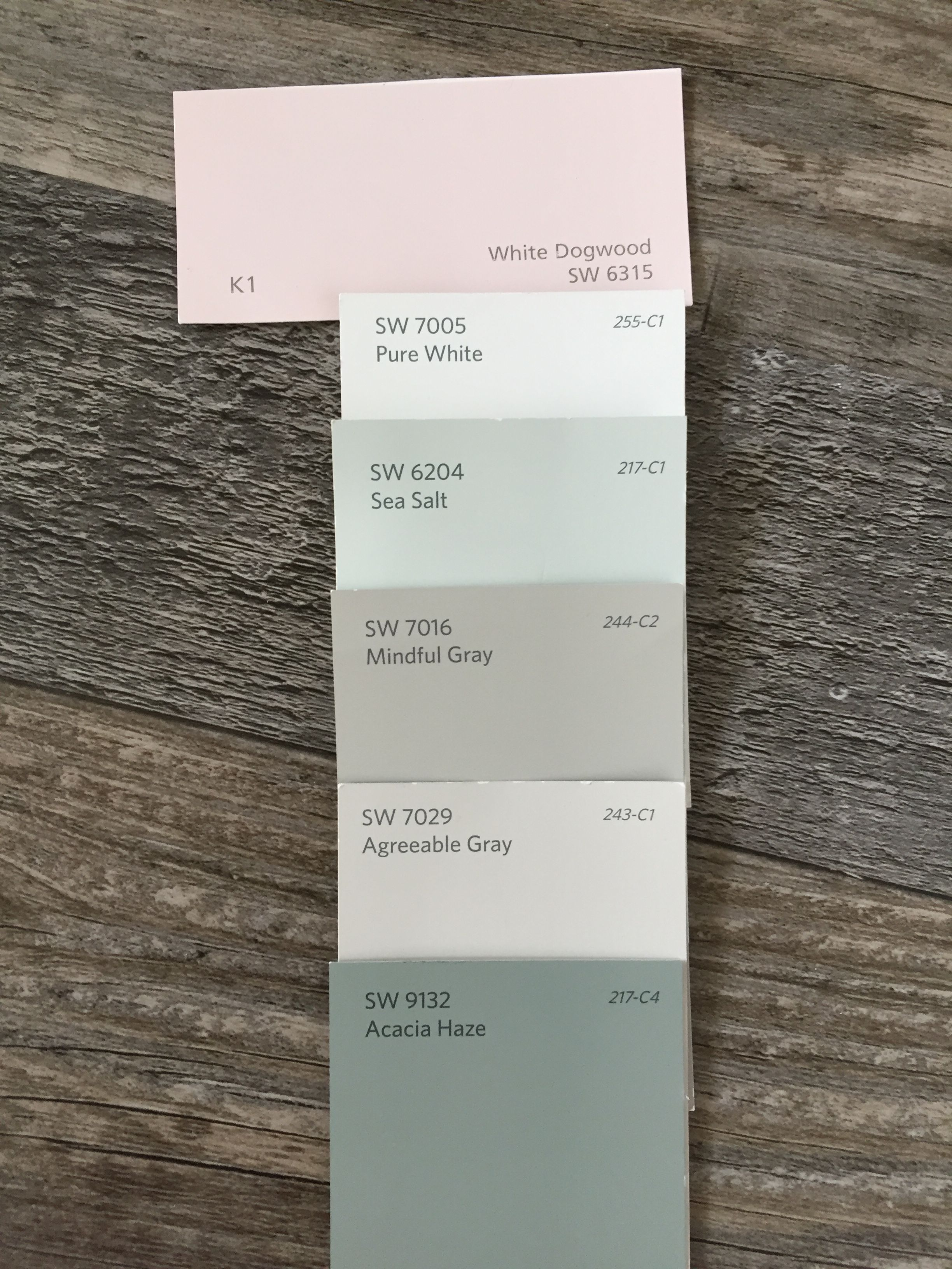Whole House Paint Palette Light And Airy Mindful Gray Agreeable Gray House Painting