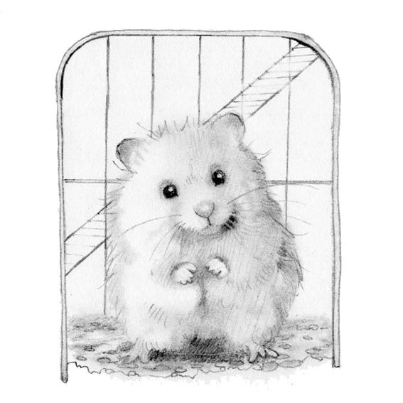 Alison Edgson Illustrations: 'Caged'
