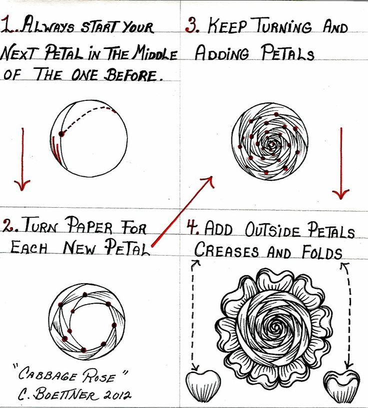 Zentangle Flower Patterns Step by Step Zentangle Patterns Step by
