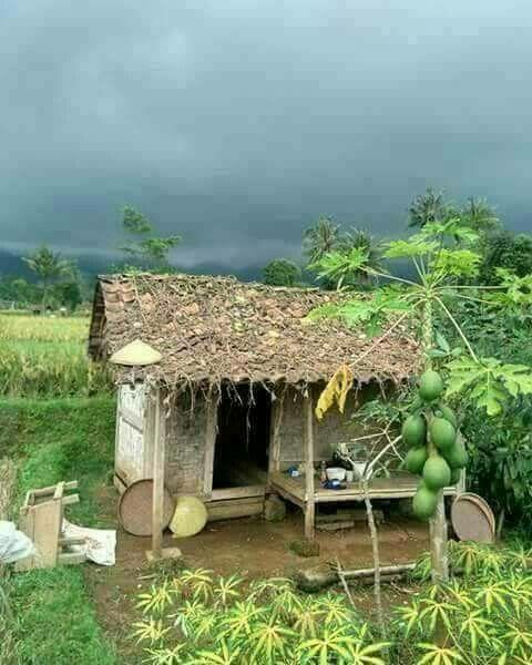 Pin de mirta elsa en casas de campo casas de campo for Decoracion de casas brasilenas