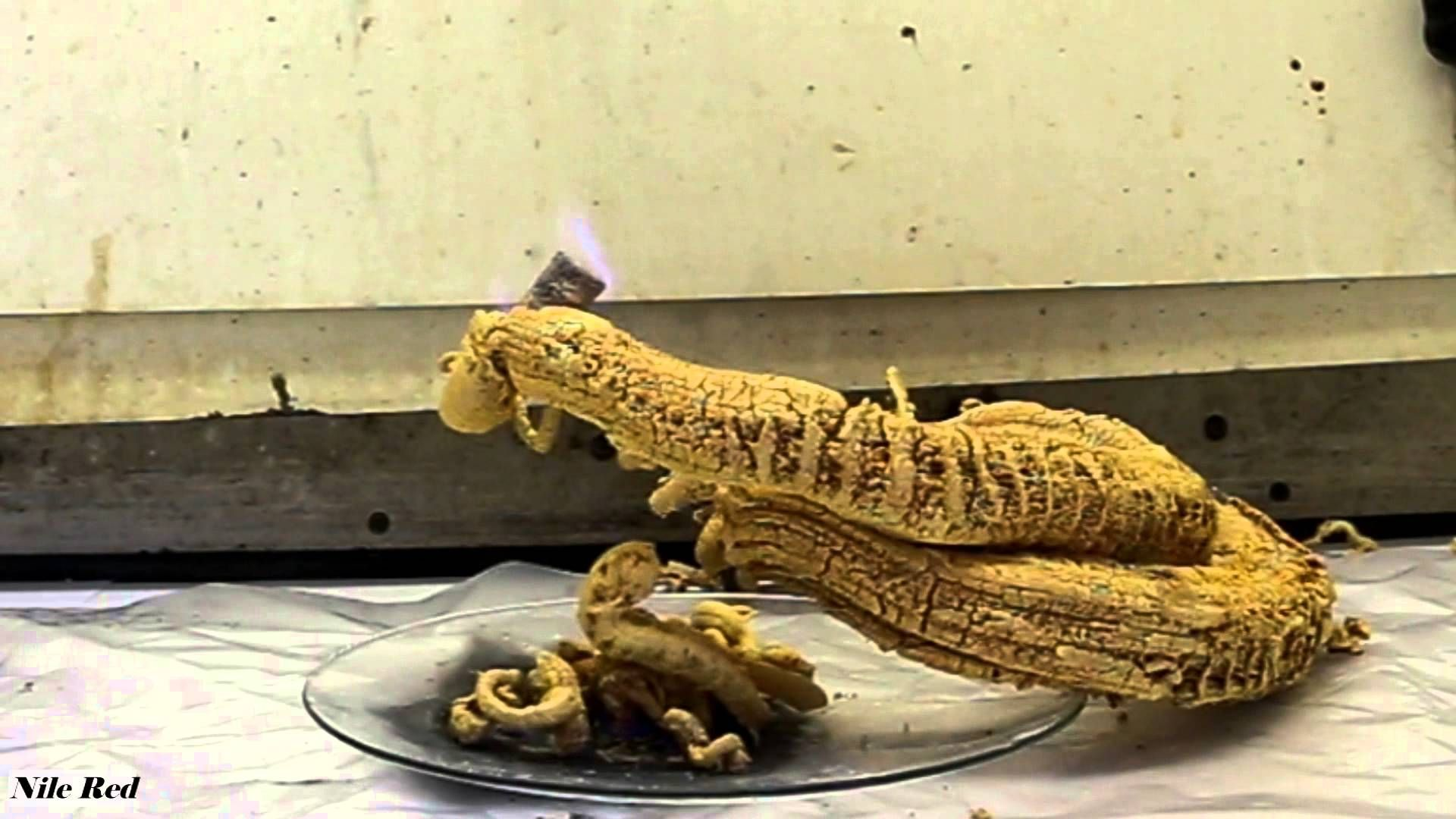 the pharaoh s serpent an unnerving chemical reaction videos