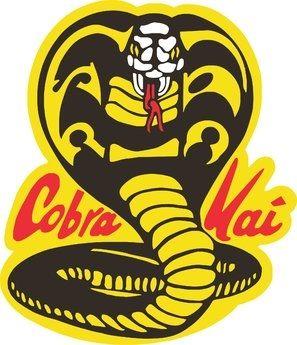 Movie Posters Karate Kid Cobra Kai Kid Cobra Karate Kid