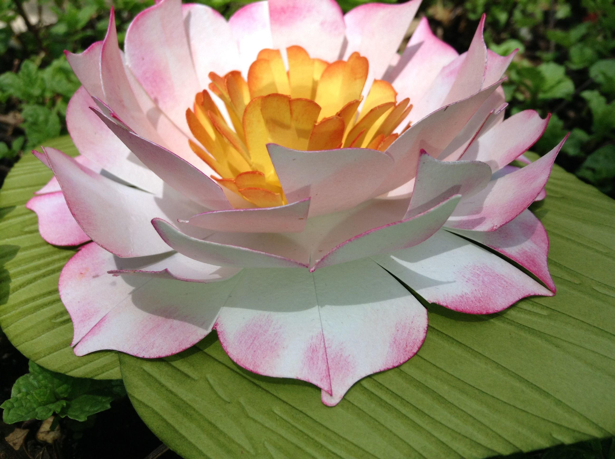 Water lily yes its paper claude monet pinterest water claude monet pinterest water lilies water and diy flowers izmirmasajfo