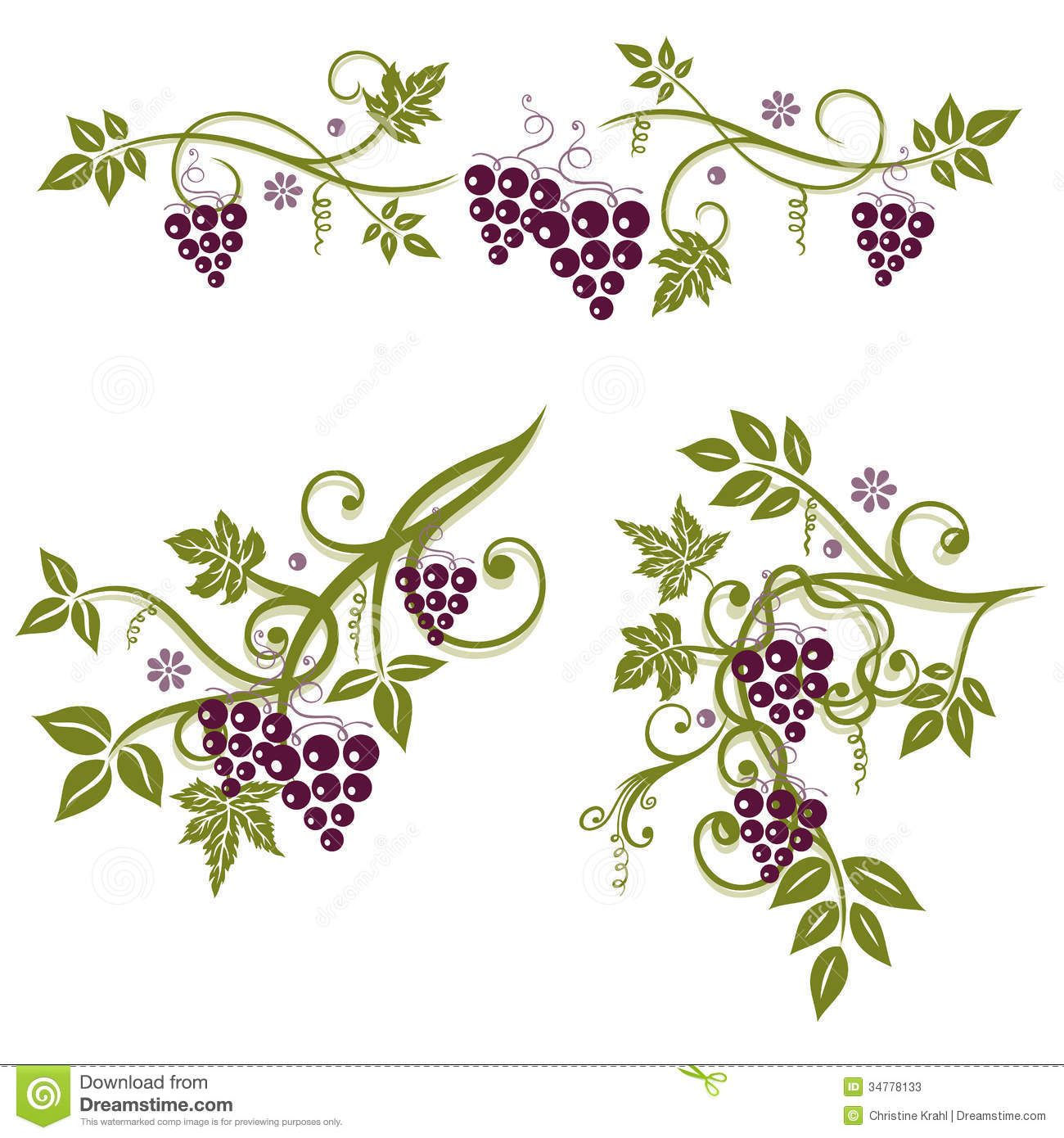 Vine Designs Art : Grape vine leaves google search la cucina inspo