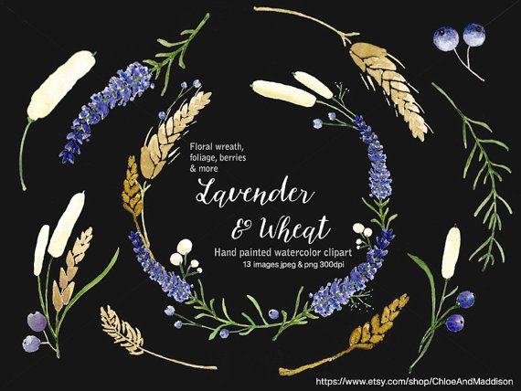 Lavender & Wheat. Digital Clipart. Hand painted Watercolor Floral ...
