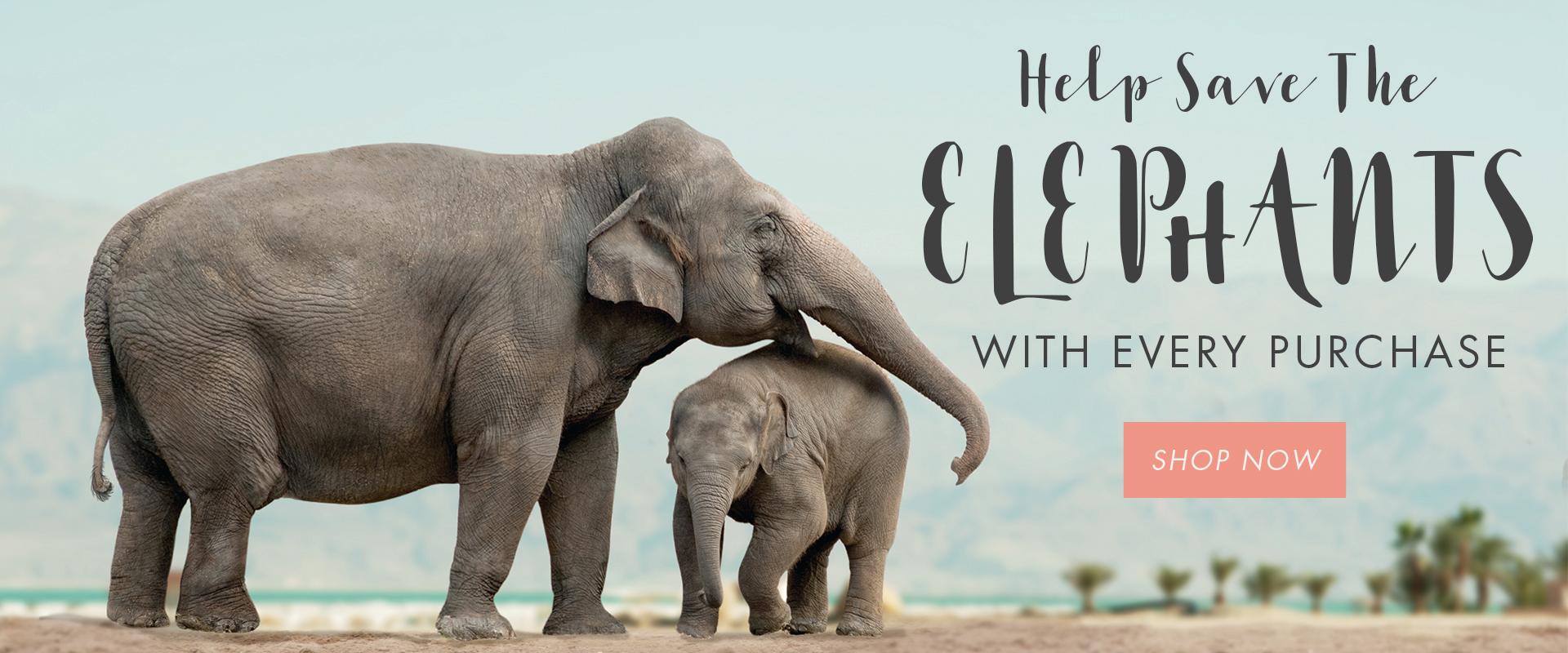 1a07ffde5efc21 Shop Ivory Ella! Elephant patterned