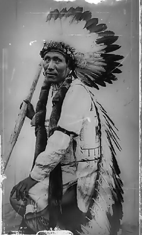 Matoha Sina (Oglala Lakota)