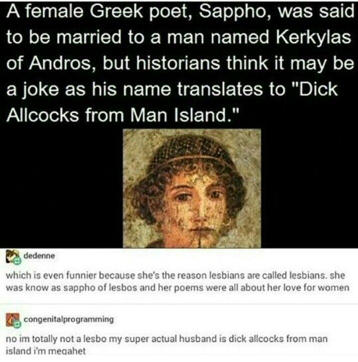 I love history sometimes   haha gay   Funny, Tumblr funny