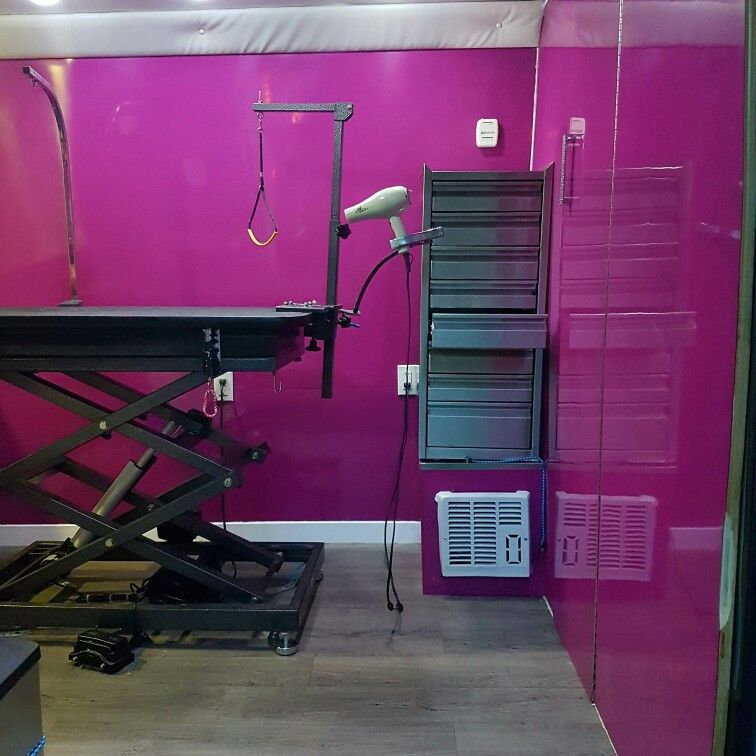 Here Is A Picture Of The Inside Of Our Mobile Grooming Van Grooming Mobile Inside