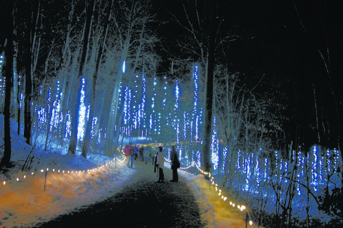 Garden Of Lights Green Bay Wi Prepossessing 11 Christmas Light Displays In Wisconsin That Are Pure Magic 2018