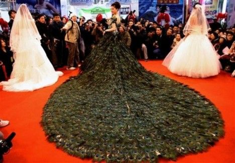 Peacock Feather Wedding Dress Most Expensive Wedding Dress Unusual Wedding Dresses Expensive Wedding Dress