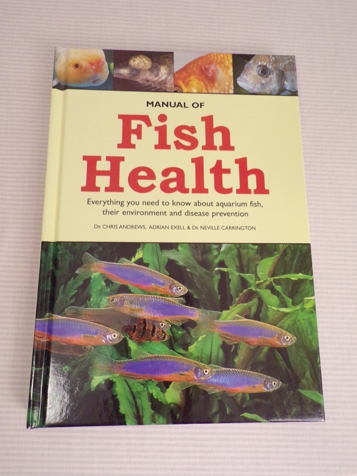 Manual of Fish Health : Everything You Need to Know about Aquarium Fish  Disease