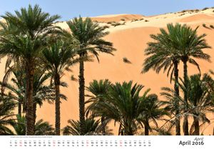 Palm gardens border directly to desert, Al Hawiyah