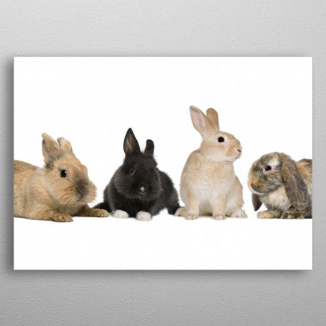 Cute Rabbits by Hristo Dimitrov | metal posters - Displate | Displate thumbnail