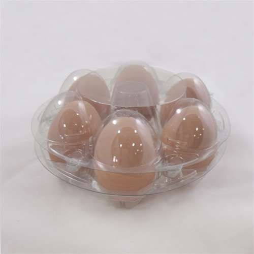 Ovotherm Glass Clear Starpack Carton W No Label Egg Carton Plastic Eggs Carton