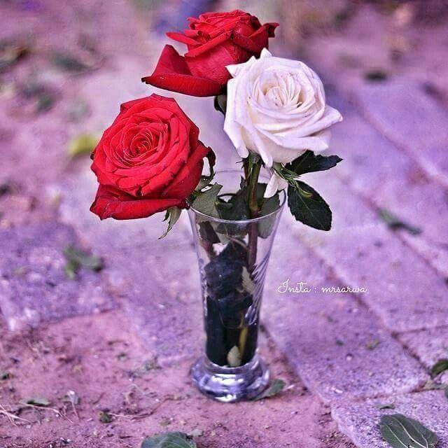 كثر هم الاصدقاء وقليل هم الاوفياء Glass Vase Rose Vase