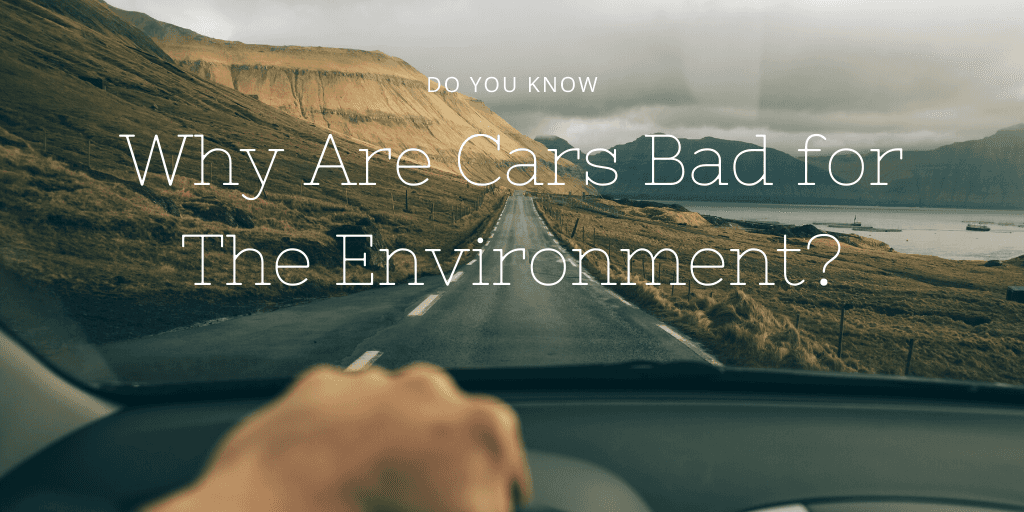 Why Are Cars Bad for The Environment? Environment, This