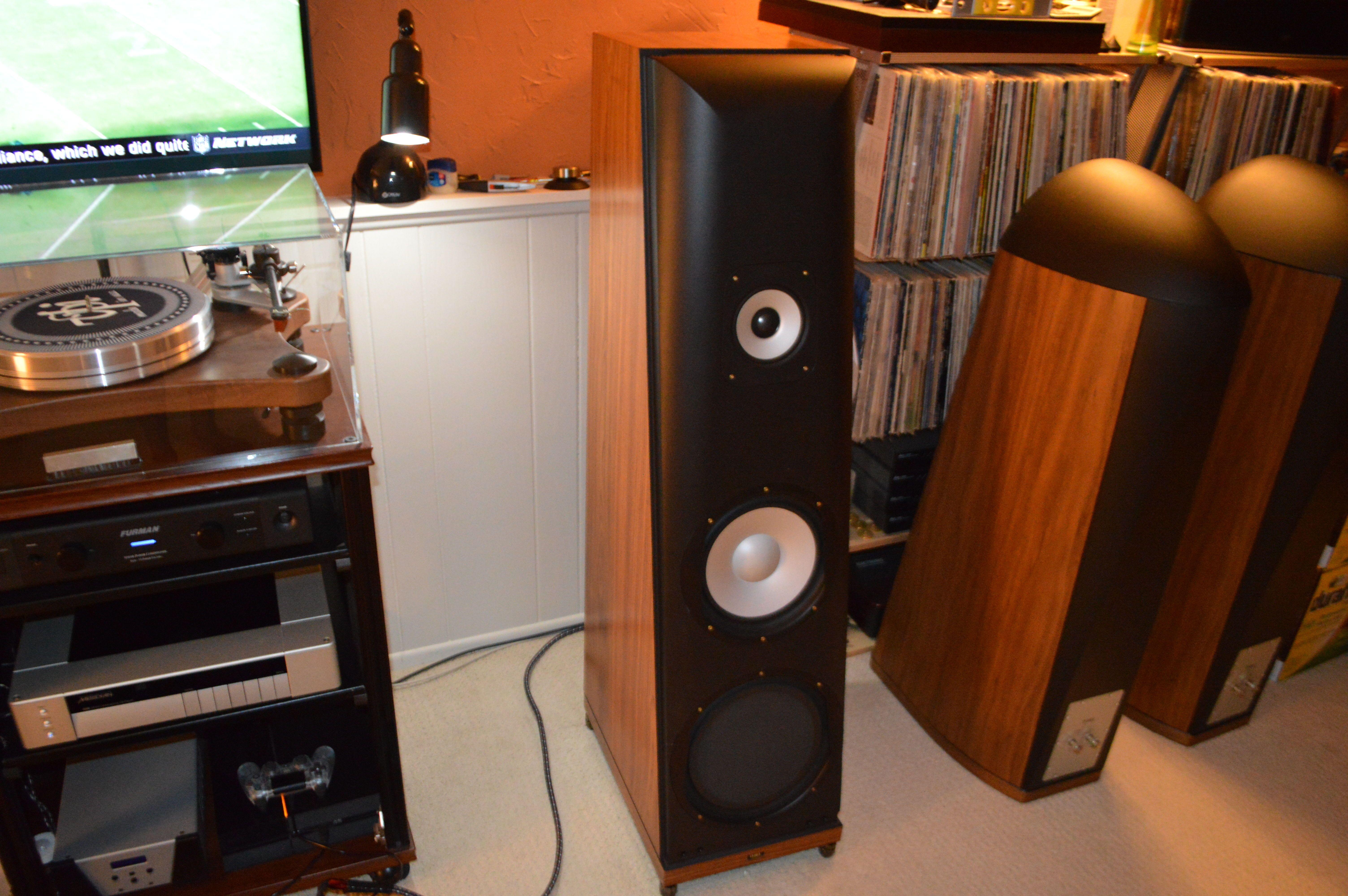 Thiel Audio Cs6 Next To A Pair Of Cs3 7 S Gives A Good Idea Of