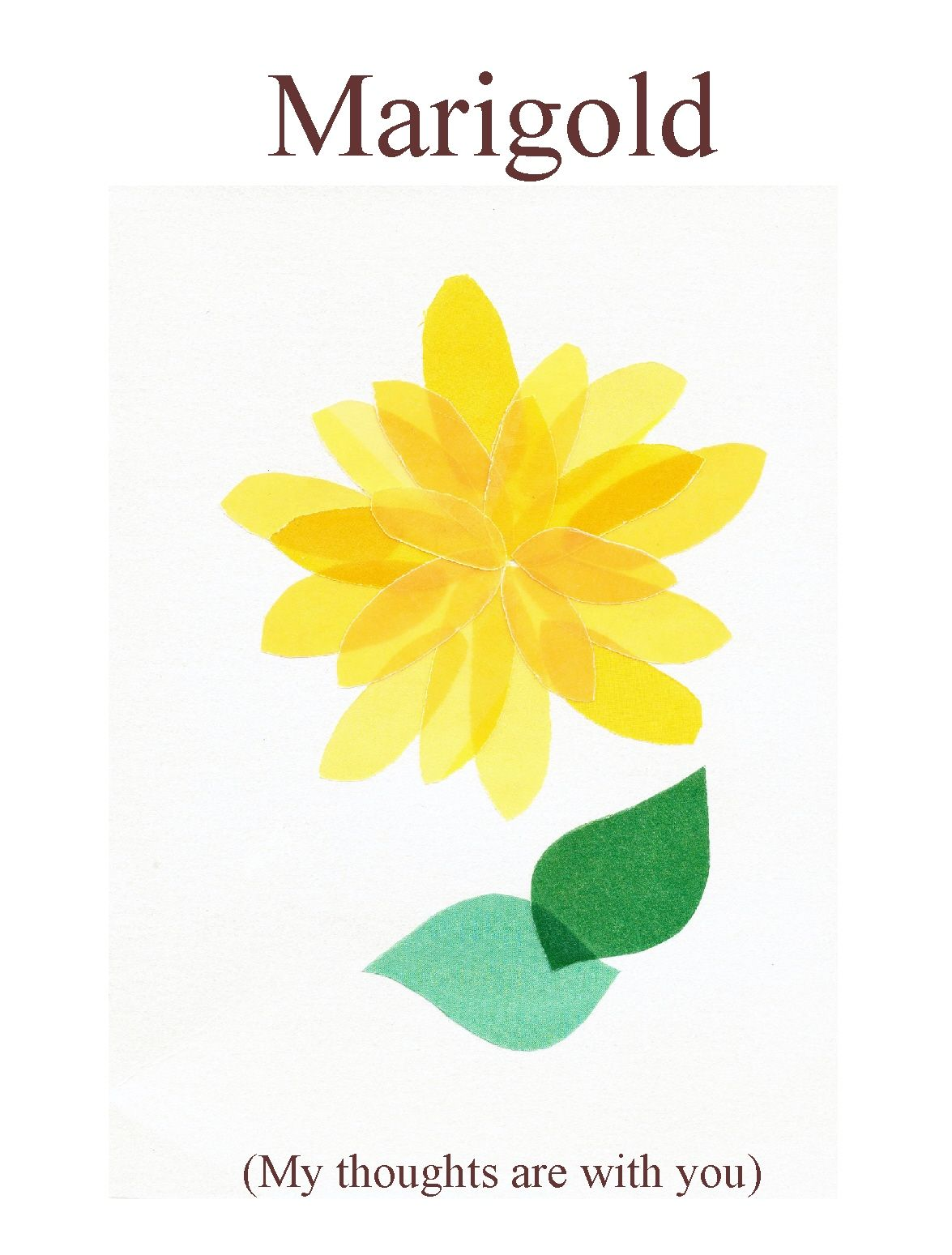 Marigold - My thoughts are with you.