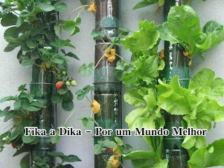 Fika the Dika - For a Better World: Pet Bottle in Gardening