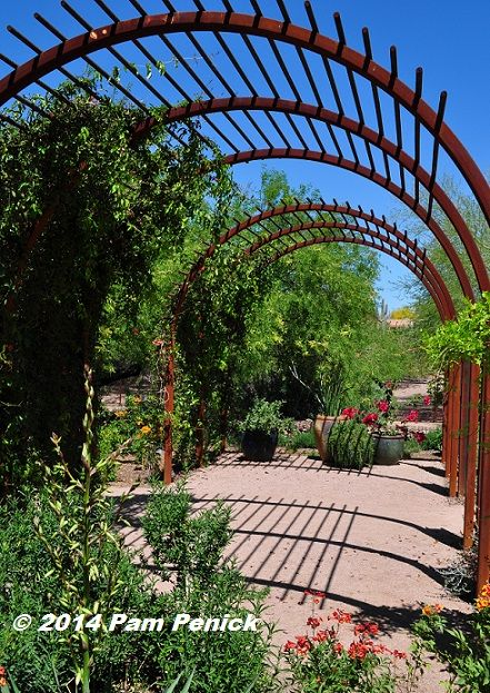 Visit to Desert Botanical Garden and Chihuly Exhibit: Archer House garden and Desert Living Trail | Digging #botanicgarden