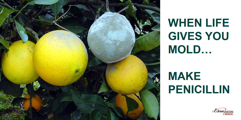 When Life Gives You Mold Make Penicillin Healthcare Innovation Invention Medical Fail Lemon Head Citrus Fruit