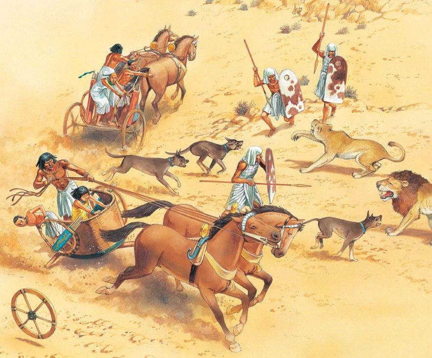 The Hyksos introduced the horse and chariot to Egypt Everyday life