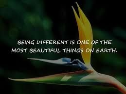 Dare to be different.