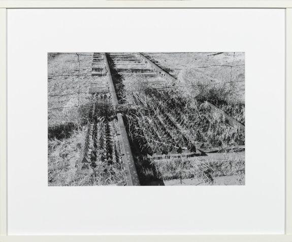 Lothar Baumgarten - Wasta Cheyenne River Meade County (1989) (gelatine-zilverdruk, 40x57cm)