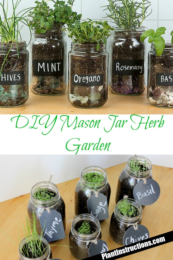 Photo of DIY Mason Jar Herb Garden