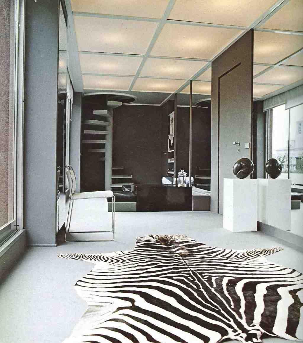 Zebra Rug Living Room Rugs In Living Room Modern Room Decor Futuristic Home