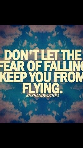 Fly High Inspirational Quotes Skydiving Quotes Quotes