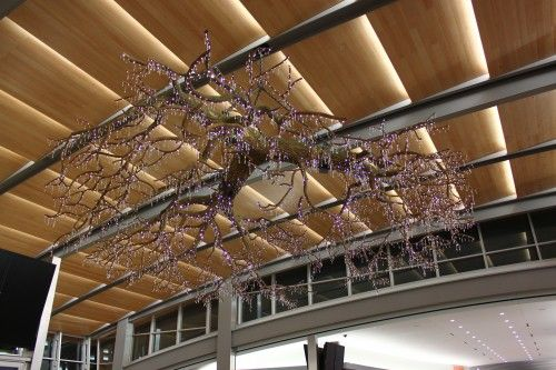Donald Lipski S Sculpture Acorn Steam Is A Chandelier In The Form Of A Valley Oak Tree Decorated With S Sacramento Airport Crystal Chandelier Cool Pictures