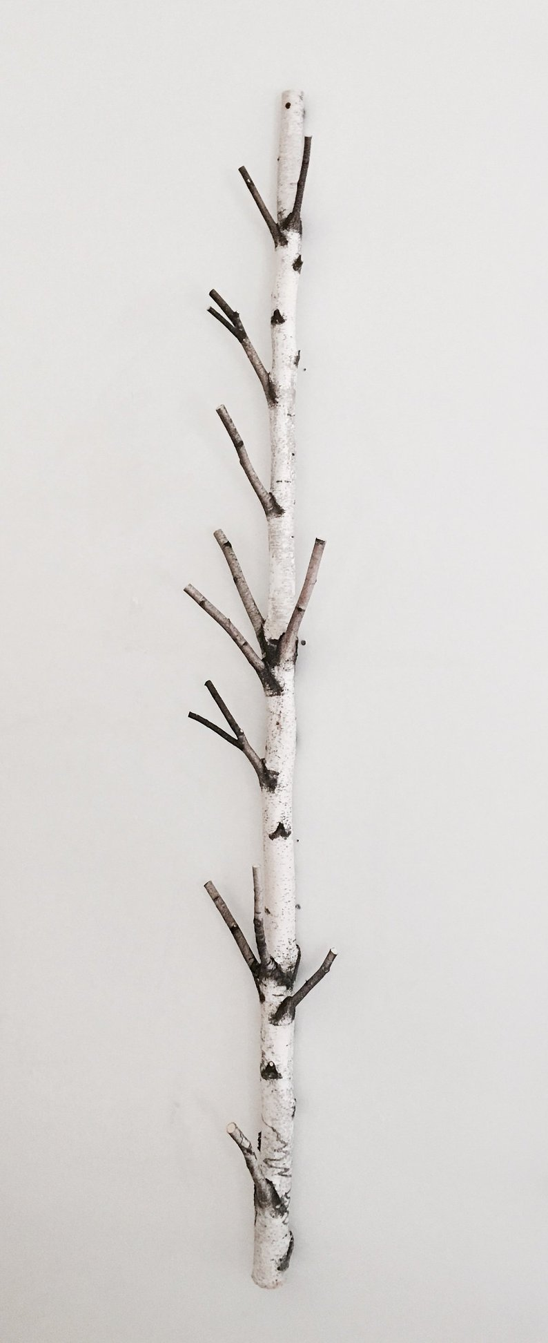 White Birch Tree Coat Rack Birch Branch Birch Pole Birch Log Trunk Coat Rack Coat Tree Wooden Hooks Modern Rustic Wall Decor Tree Coat Rack