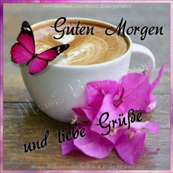 Guten Morgen Habt Alle Einen Wunderschönen Tag Guten