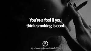 Smoking Quotes Smoking Quotes এর ছবির ফলাফল  Smocking  Pinterest