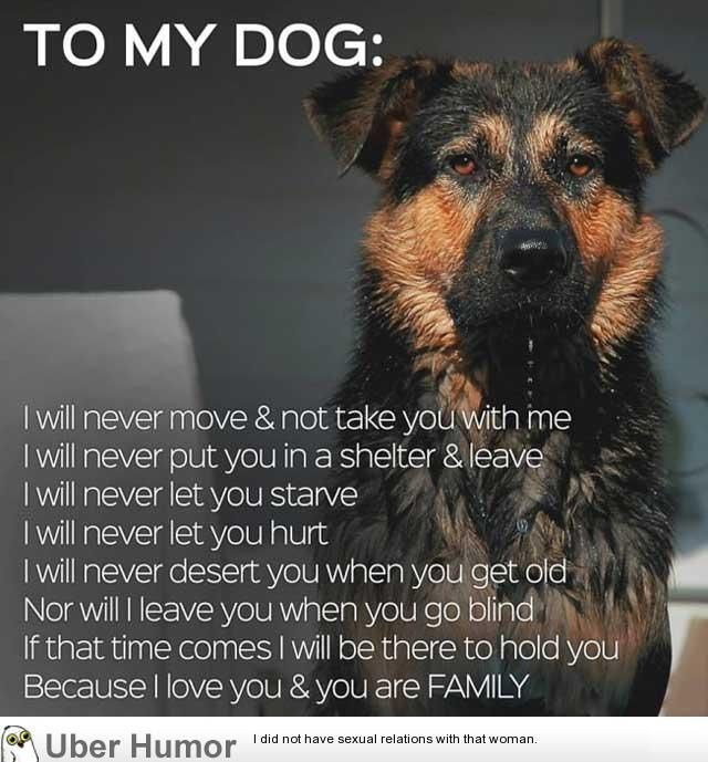 My Dog Loves Me Quotes: Funny Quotes About Dog Owners. QuotesGram