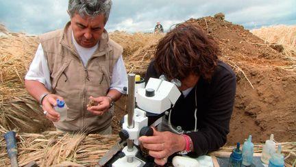 Claude Bourguignon, a longtemps mis en garde des risques que leur font courir les pratiques agricoles intensives. Désormais, ses idées sont confirmées par les scientifiques.