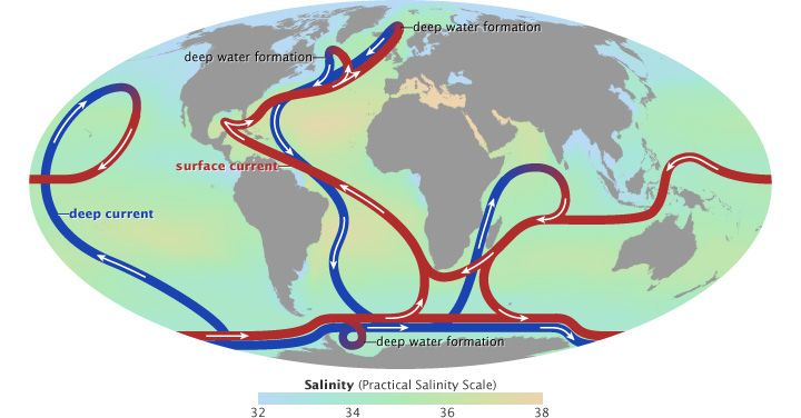 Map of ocean salinity and the thermohaline circulation sea map of ocean salinity and the thermohaline circulation gumiabroncs Choice Image