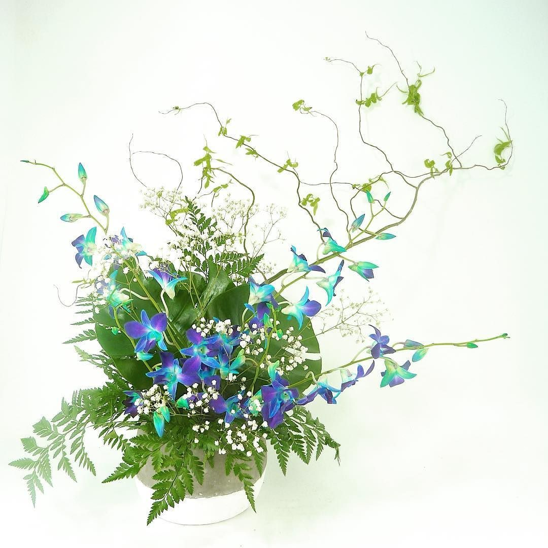 Wedding Flowers Vancouver Bc: Awesome Vancouver Florist Blue Orchids And Green